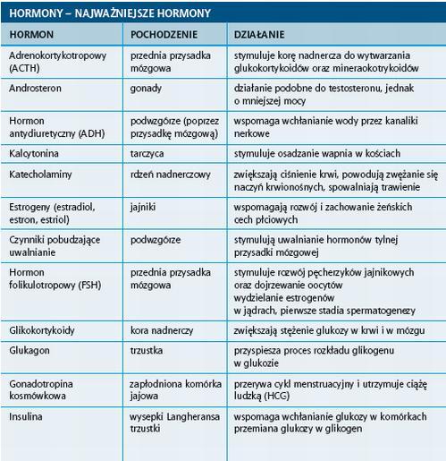 nazwy hormonów